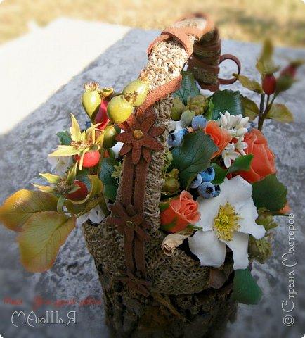 """Здравствуйте жители страны!!!!!! Слепилась у меня такая корзинка с цветами. Давно хотела лесной орешек слепить, тут и шиповник попробовала, первый раз слепила...... корзинку тоже сама """"натворила""""))) фото 4"""