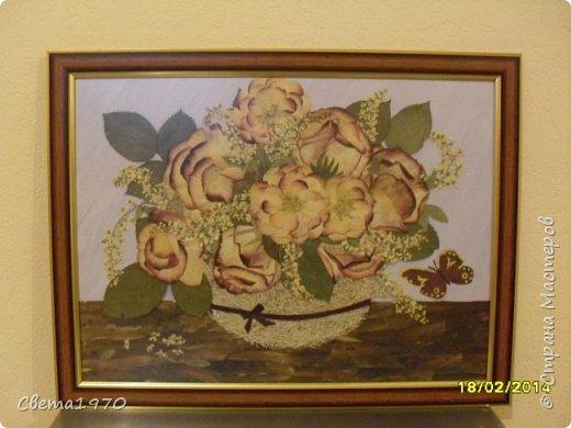 """Здравствуйте, дорогие соседи! Моим первым хобби (не считая кулинарии) была ошибана - создание картин и панно из сухих растений. Сейчас к этому виду искусства я несколько охладела, может, еще вернусь к этому занятию - осталась еще целая коробка засушенных цветов и листьев, но пока меня захватил декор бутылок и точечная роспись. Решила поделиться с вами своими скромными ошибанками, сделанными несколько лет назад, с кучей ошибок, но с частичкой моей души. Во всех работах краски использовались только для создания фона. Работы выкладываю по хронологии создания. Итак, """"Аквилегия в вазе"""". Использованы: аквилегия, листья каких-то растений, фон гуашь. фото 4"""