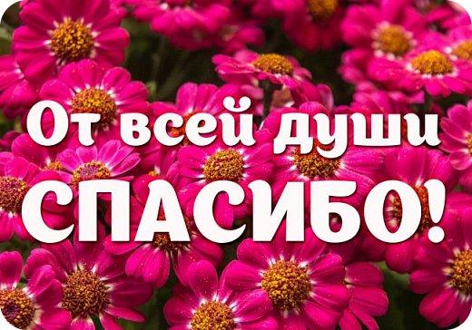 Добрый день! Сегодня получила посылочку по ПИФ игре от Олечки http://stranamasterov.ru/user/305023 .Огромное-огромное спасибище ,тебе Оленька за такие подарочки!!!!! фото 13