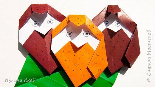 Оригами Сова для начинающих