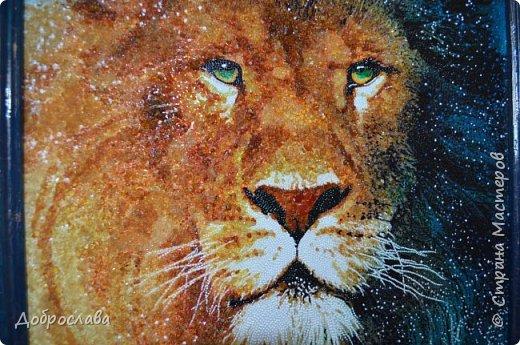 Здравствуйте дорогие мастерицы! В копилку моих янтарных работ добавились ещё две. Звёздный лев и цветок мака. Процесс работы я описывать не буду, он есть в предыдущем посте. Размер рамки 30х30. фото 1
