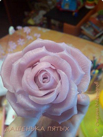 Здравствуйте дорогие мастера и мастерицы:-)решила выложить на ваш суд мои начинания в лепке из холодного фарфора;-)Правда пока не могу подобрать хороший клей для фарфора поэтому цветочки мои сильно потрескались после сушки:-(Ну пока тренируюсь:-) Гиацинт:-) фото 6