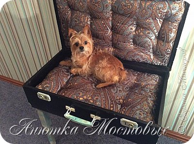Старый чемодан-столик-лежанка) фото 8
