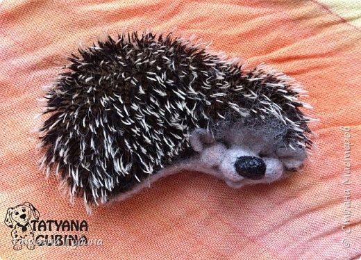 Всем привет :) У меня еще весной появился вот такой ежик. Зовут его Шурик. Этот сплюшка сладко спит, наверное, его солнышко щекочет- улыбается :) Ч-ч-шшш :)  Весь в иголках, Но не ёлка. И зимой он крепко спит. Серый маленький комочек. Он свернулся весь в клубочек. Сладко ежик наш сопит. (В. Карцев)  Размеры: 8,5 х 5 см Сзади крепление для броши. фото 2