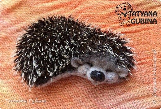 Всем привет :) У меня еще весной появился вот такой ежик. Зовут его Шурик. Этот сплюшка сладко спит, наверное, его солнышко щекочет- улыбается :) Ч-ч-шшш :)  Весь в иголках, Но не ёлка. И зимой он крепко спит. Серый маленький комочек. Он свернулся весь в клубочек. Сладко ежик наш сопит. (В. Карцев)  Размеры: 8,5 х 5 см Сзади крепление для броши. фото 3