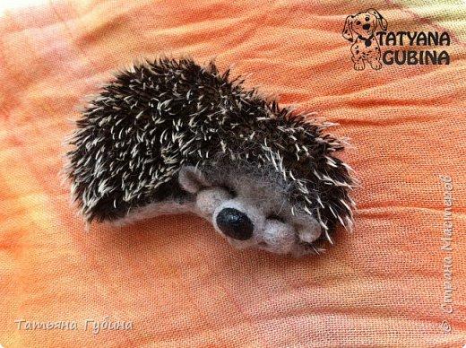 Всем привет :) У меня еще весной появился вот такой ежик. Зовут его Шурик. Этот сплюшка сладко спит, наверное, его солнышко щекочет- улыбается :) Ч-ч-шшш :)  Весь в иголках, Но не ёлка. И зимой он крепко спит. Серый маленький комочек. Он свернулся весь в клубочек. Сладко ежик наш сопит. (В. Карцев)  Размеры: 8,5 х 5 см Сзади крепление для броши. фото 4