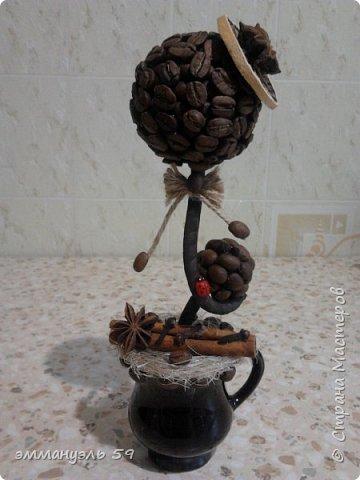Добрый день дорогие рукодельницы! Представляю вам свои кофейные деревца. Буду рада услышать ваши комментарии. фото 1