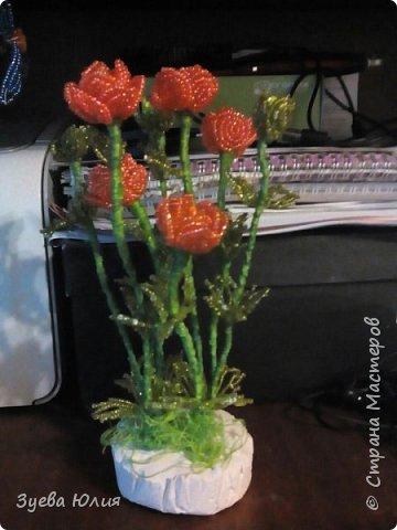 Полевые цветочки) фото 3