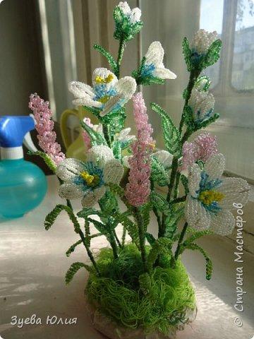 Полевые цветочки) фото 2