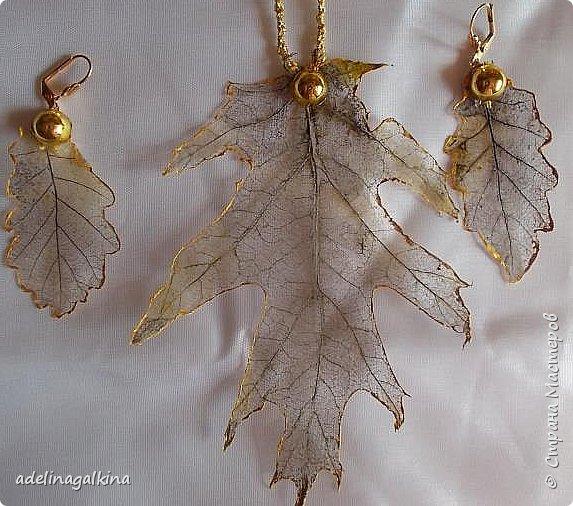 Набор украшений из скелетированных листьев тополя и берёзы. Цепочка -макраме фото 2