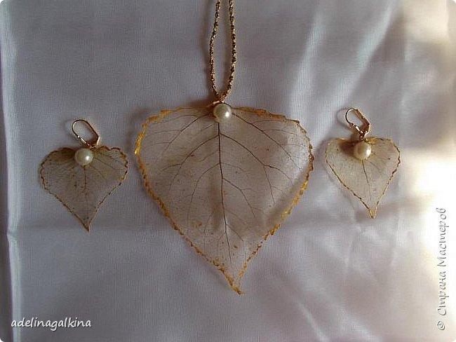 Набор украшений из скелетированных листьев тополя и берёзы. Цепочка -макраме