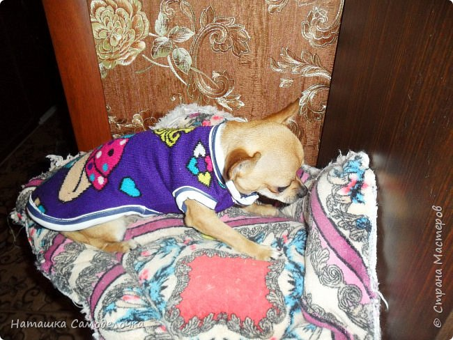 из старого дочкиного свитера фото 2