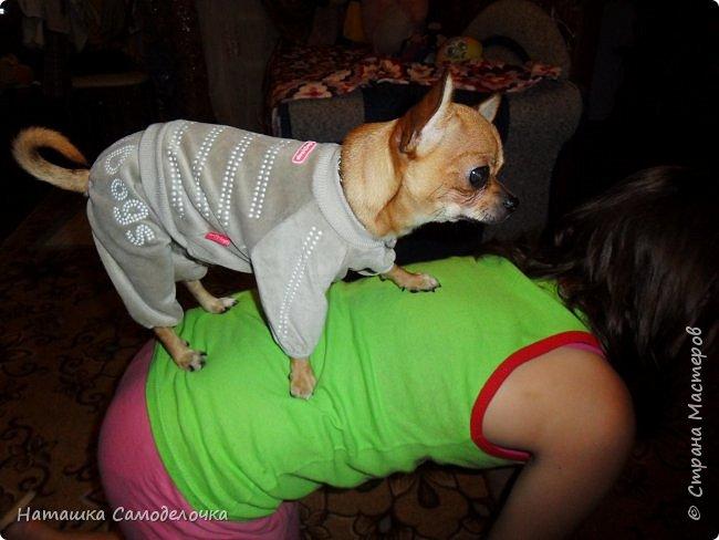 из старого дочкиного свитера фото 8