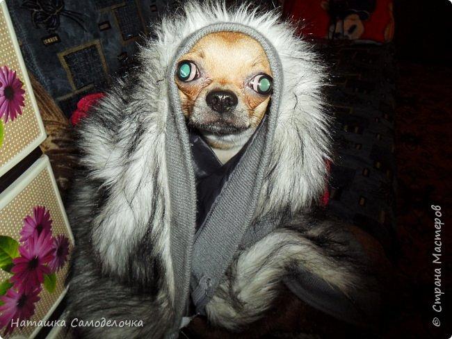 Всем привет,сшился вот такой жилетик из старой куртки фото 7
