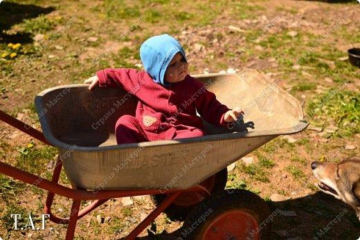 В детстве, как все, с нетерпением ждала каникулы, что бы ехать в гости к бабушке в деревню. Надеюсь, что внук Виталик будет спешить в страну своего детства. Дочь с мужем и внуком живут в другом городе, но достаточно регулярно навещают нас. фото 26