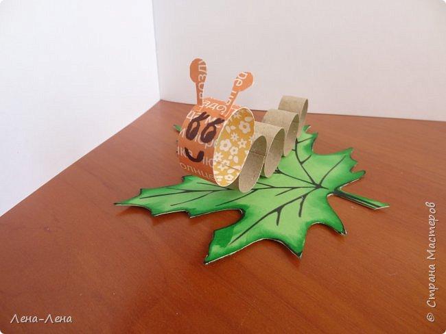 Весёлые гусенички фото 1