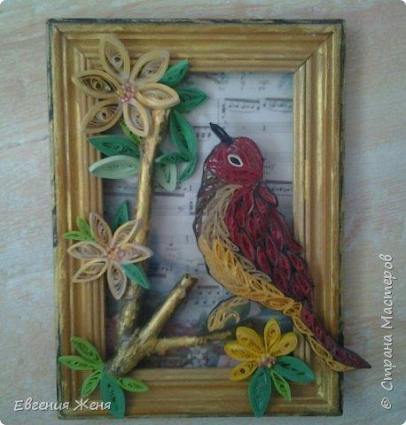 Пусть радует Вас пенье птиц по утрам... фото 5