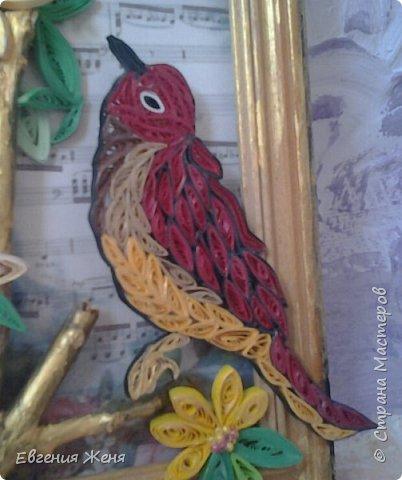 Пусть радует Вас пенье птиц по утрам... фото 2