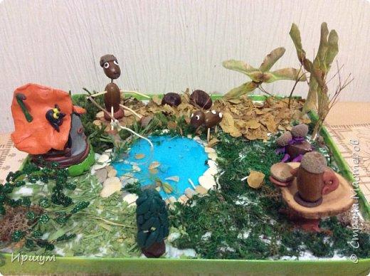 Вот сделали с сынулей поделку в детский садик из природного материала.  фото 1