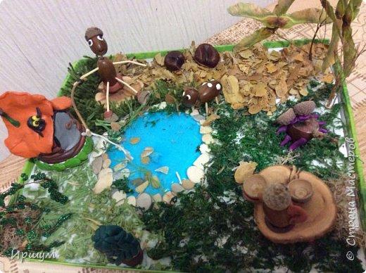 Вот сделали с сынулей поделку в детский садик из природного материала.  фото 2