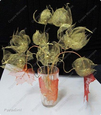 Скелетированные листья клена и физалиса. фото 4