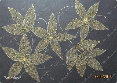 Скелетированные листья клена и физалиса. фото 7