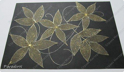 Скелетированные листья клена и физалиса. фото 10