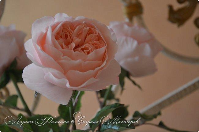 """Давно засматривалась на фотографии английских роз Дэвида Остина.  И вот пришло оно - ВДОХНОВЕНИЕ!!! Вы ведь знаете, как это бывает!!!  И вот так, с огромной радостью и желанием, сотворился мой """" Английский букет"""".  фото 3"""