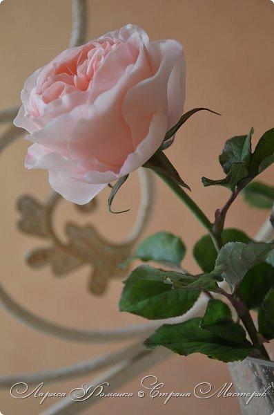 """Давно засматривалась на фотографии английских роз Дэвида Остина.  И вот пришло оно - ВДОХНОВЕНИЕ!!! Вы ведь знаете, как это бывает!!!  И вот так, с огромной радостью и желанием, сотворился мой """" Английский букет"""".  фото 10"""