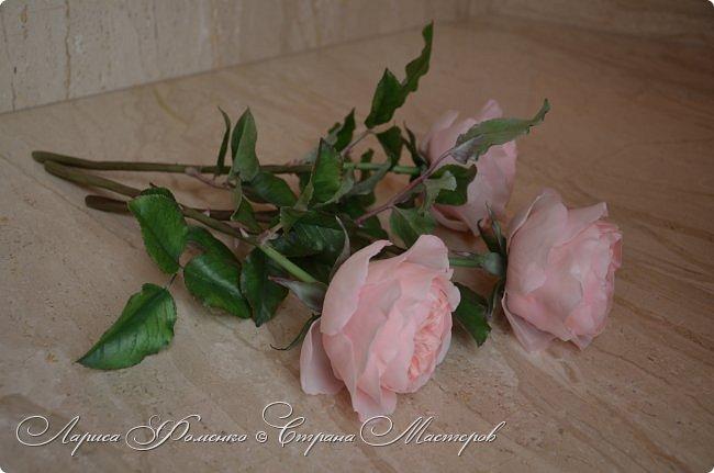 """Давно засматривалась на фотографии английских роз Дэвида Остина.  И вот пришло оно - ВДОХНОВЕНИЕ!!! Вы ведь знаете, как это бывает!!!  И вот так, с огромной радостью и желанием, сотворился мой """" Английский букет"""".  фото 4"""