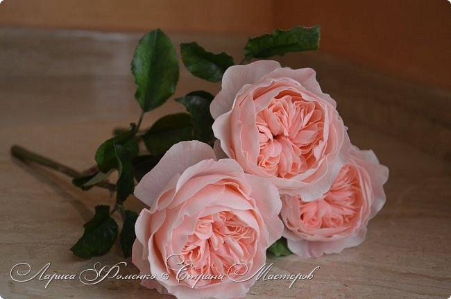 """Давно засматривалась на фотографии английских роз Дэвида Остина.  И вот пришло оно - ВДОХНОВЕНИЕ!!! Вы ведь знаете, как это бывает!!!  И вот так, с огромной радостью и желанием, сотворился мой """" Английский букет"""".  фото 5"""
