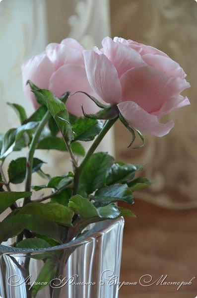 """Давно засматривалась на фотографии английских роз Дэвида Остина.  И вот пришло оно - ВДОХНОВЕНИЕ!!! Вы ведь знаете, как это бывает!!!  И вот так, с огромной радостью и желанием, сотворился мой """" Английский букет"""".  фото 11"""