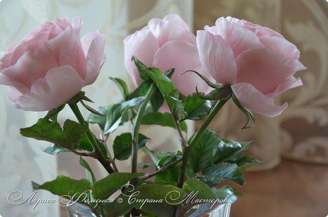 """Давно засматривалась на фотографии английских роз Дэвида Остина.  И вот пришло оно - ВДОХНОВЕНИЕ!!! Вы ведь знаете, как это бывает!!!  И вот так, с огромной радостью и желанием, сотворился мой """" Английский букет"""".  фото 9"""