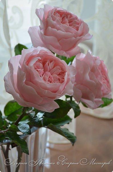 """Давно засматривалась на фотографии английских роз Дэвида Остина.  И вот пришло оно - ВДОХНОВЕНИЕ!!! Вы ведь знаете, как это бывает!!!  И вот так, с огромной радостью и желанием, сотворился мой """" Английский букет"""".  фото 6"""