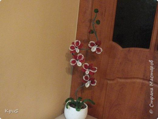 Добрый вечер жители СМ. Представляю Вашему вниманию несколько моих работ из бисера.  Эту композицию из орхидеи и лилии закончила только сегодня. фото 6