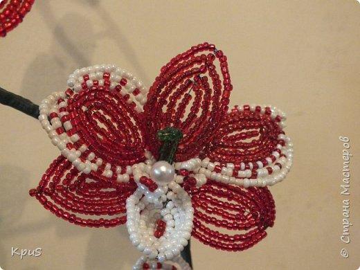 Добрый вечер жители СМ. Представляю Вашему вниманию несколько моих работ из бисера.  Эту композицию из орхидеи и лилии закончила только сегодня. фото 8