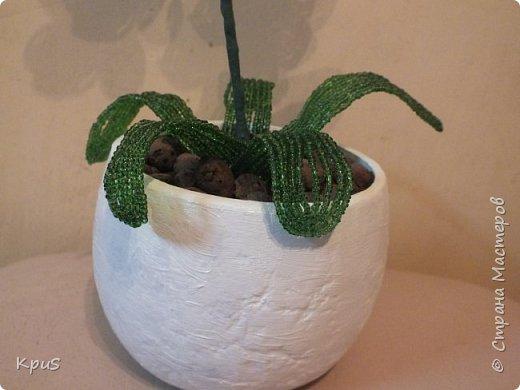 Добрый вечер жители СМ. Представляю Вашему вниманию несколько моих работ из бисера.  Эту композицию из орхидеи и лилии закончила только сегодня. фото 9