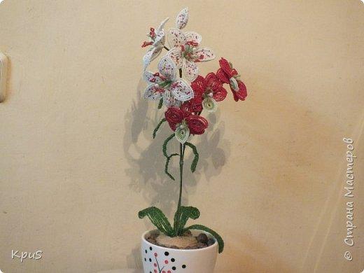 Добрый вечер жители СМ. Представляю Вашему вниманию несколько моих работ из бисера.  Эту композицию из орхидеи и лилии закончила только сегодня. фото 1