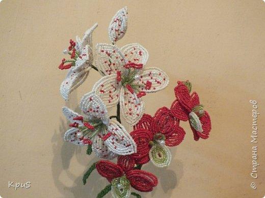 Добрый вечер жители СМ. Представляю Вашему вниманию несколько моих работ из бисера.  Эту композицию из орхидеи и лилии закончила только сегодня. фото 2