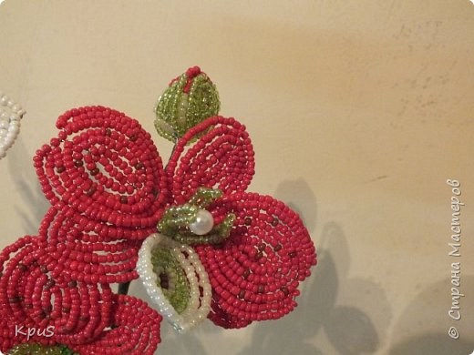 Добрый вечер жители СМ. Представляю Вашему вниманию несколько моих работ из бисера.  Эту композицию из орхидеи и лилии закончила только сегодня. фото 5