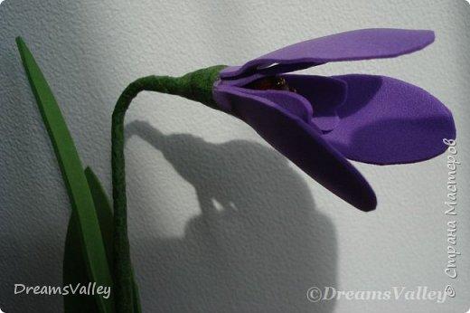 Люблю фоамиран: легко режется, запоминает форму и цветы из него получаются очень реалистичными. фото 2