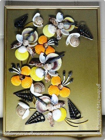 Доброго времени суток, дорогие жители СМ!  Панно из ракушек, размер 30х40 см, ракушки покрыты бесцветным лаком. фото 1