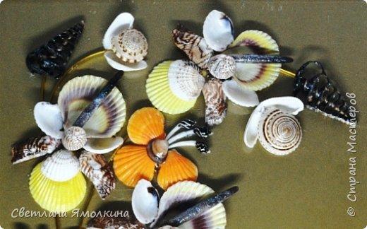 Доброго времени суток, дорогие жители СМ!  Панно из ракушек, размер 30х40 см, ракушки покрыты бесцветным лаком. фото 3