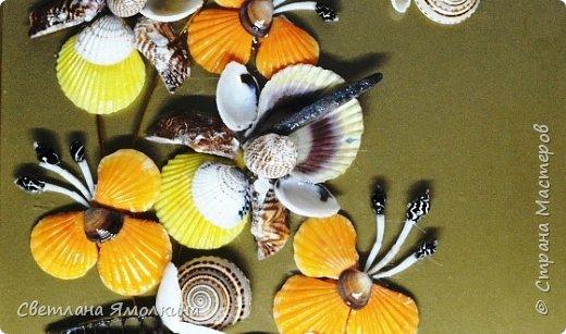 Доброго времени суток, дорогие жители СМ!  Панно из ракушек, размер 30х40 см, ракушки покрыты бесцветным лаком. фото 4