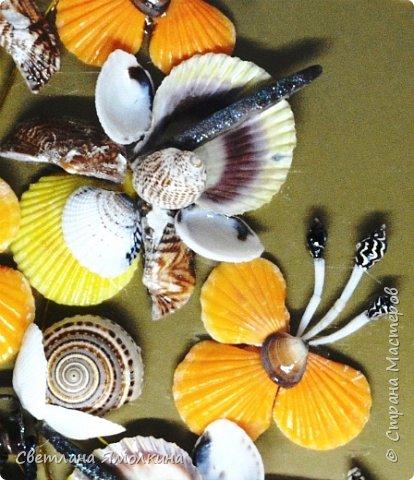 Доброго времени суток, дорогие жители СМ!  Панно из ракушек, размер 30х40 см, ракушки покрыты бесцветным лаком. фото 7