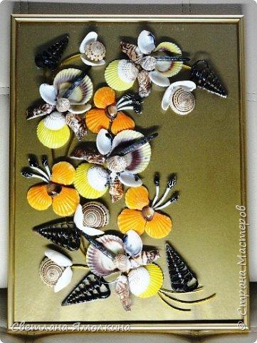 Доброго времени суток, дорогие жители СМ!  Панно из ракушек, размер 30х40 см, ракушки покрыты бесцветным лаком. фото 8