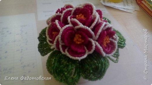 мои первые цветочки)) сделано в подарок воспитателям фото 4