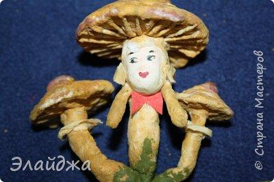 Всем Привет из Днепропетровска! Рада видеть Вас на своей страничке! Ваши советы, критика помогает мне делать мои игрушки более лучшими. Так что Всем заглянувшим  хочу  показать свои лесные грибы которые  слепились на одном дыхании. Наверное потому ,что у нас в этом году грибной сезон  рано начался и продолжается...идут дожди и стоит жара! фото 21