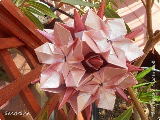 Кусудама Флорамия  фото 1
