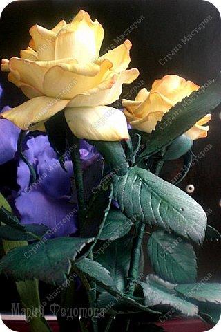 Добрый день,дорогие гости!Продолжаю осваивать так полюбившийся мной фоамиран. Сегодня у меня ирисы бородатые и розы на стебле.Цветы изготовлены для интерьерной композиции,чем буду еще дополнять букет - пока не знаю...размышляю.Вот он - мой красавчик!Такой хорошенький получился - аж пищу от удовольствия! Пока их три...хочу сделать еще несколько - другого цвета. Ирис бородатый изготовлен по МК чудесной мастерицы Марины Ченцовой. Фоамиран иранский.Тонировка масляной пастелью.... фото 9